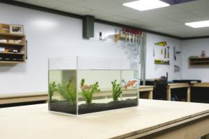 Plexiglas Aquarium selber bauen Ergebnis mit Fisch
