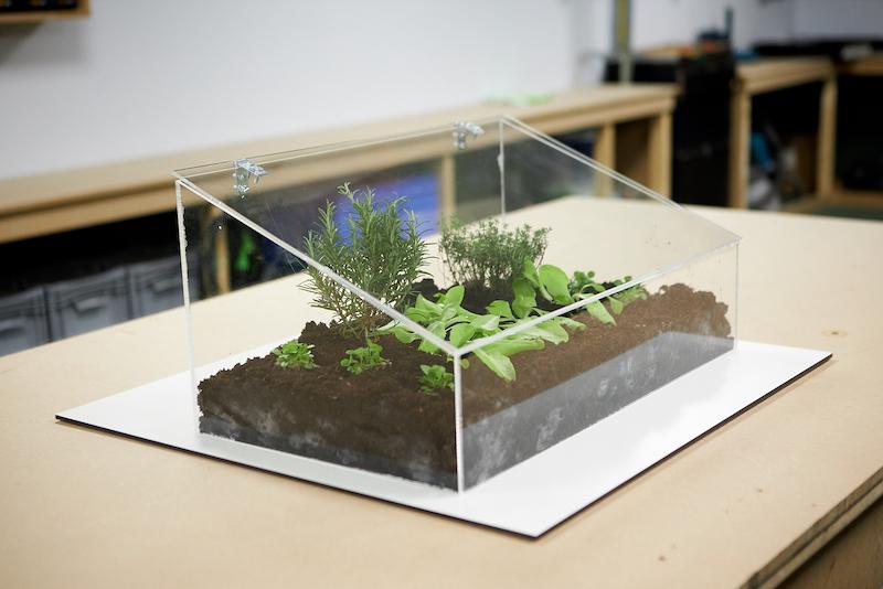 Mini Gewaechshaus DIY Endergebnis mit Pflanzen