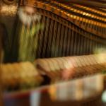Klavier restaurieren : umbau