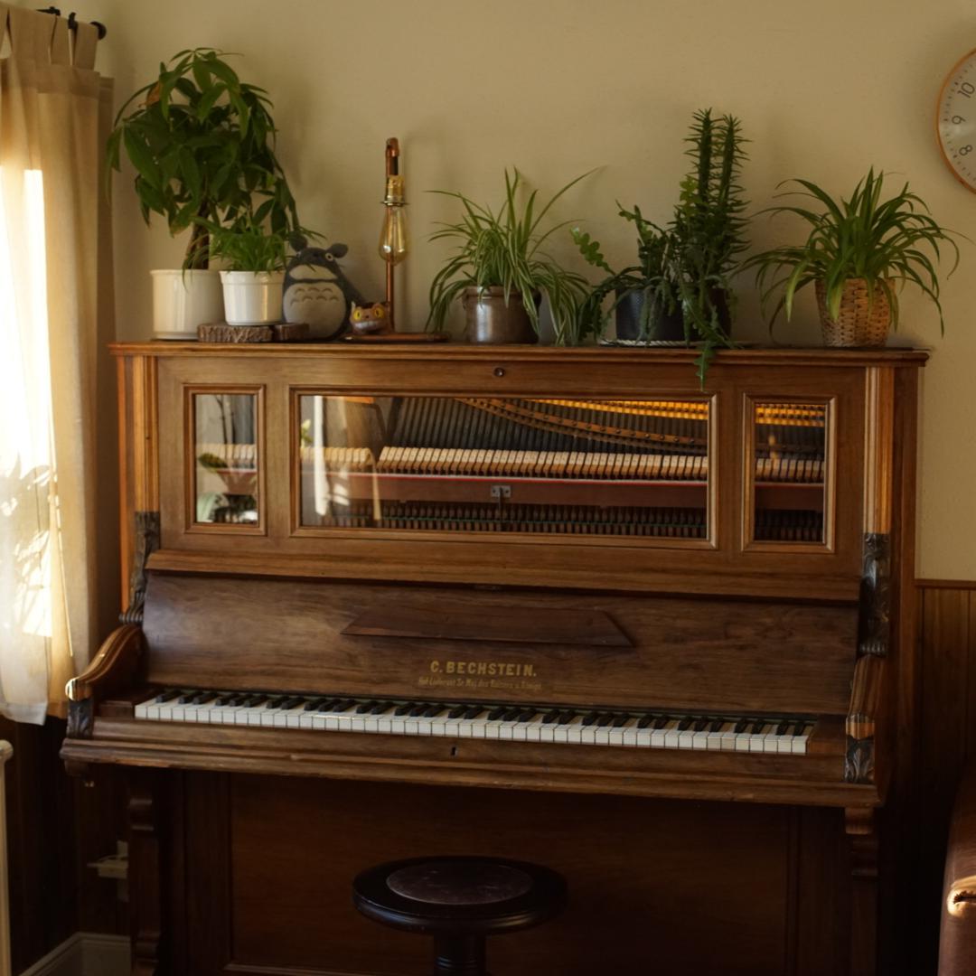 Klavier restaurieren