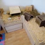 meerschweinchen gehege plexiglas